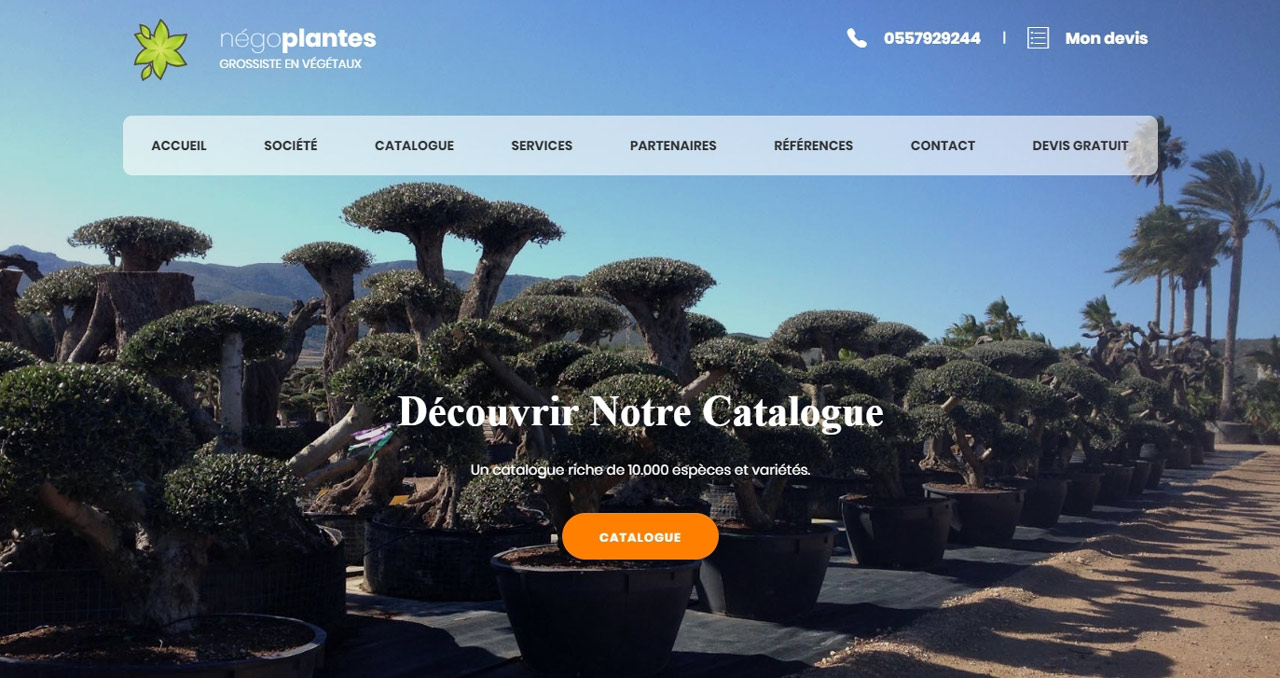 Capture du site Negoplantes