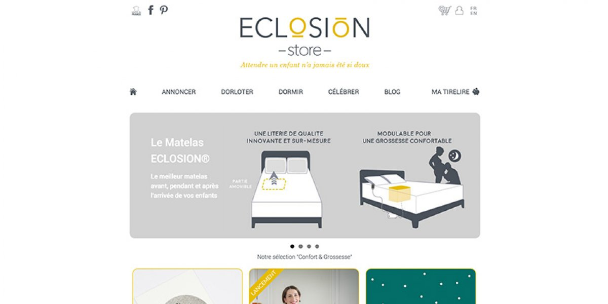 Eclosion Store